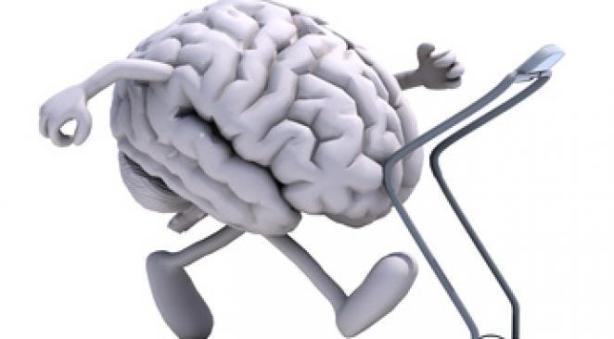 maroc drain brain